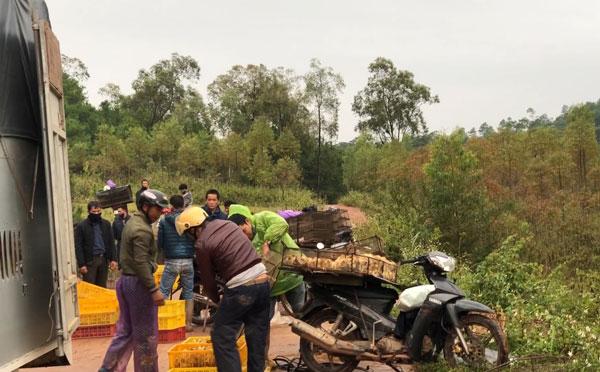 Gà lậu Trung Quốc tăng mạnh, Bộ Nông nghiệp ra công điện khẩn